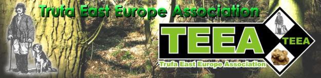 Trufe-Turism - Pret | Preturi Trufe-Turism