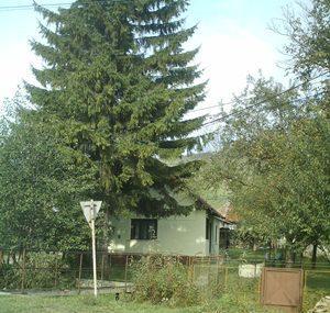 Vind casa in statiunea Vilcele - Pret | Preturi Vind casa in statiunea Vilcele