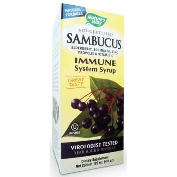 Adjuvant remediu natural Sambucus Immune Syrup 120 ml - Pret | Preturi Adjuvant remediu natural Sambucus Immune Syrup 120 ml