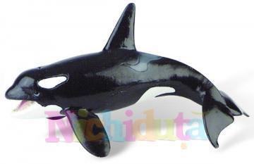 Balena ucigasa (orca) - Pret | Preturi Balena ucigasa (orca)