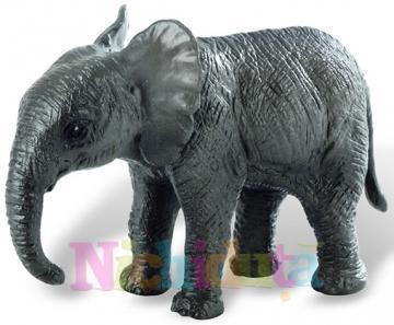 Pui de elefant african Deluxe - Pret | Preturi Pui de elefant african Deluxe